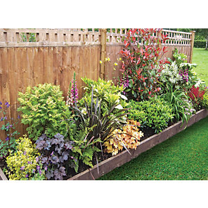 Garden on a Roll Mixed Shady Plant Border - 900mm x 3m