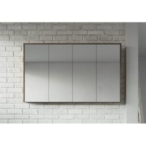 Clitherall 120cm x 72cm Surface Mount Mirror Cabinet Brayden Studio Finish: Brown