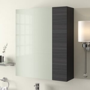 Maddalena 60cm x 71.5cm Surface Mount Mirror Cabinet Belfry Bathroom Finish: Black