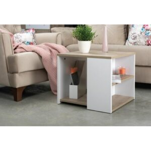 Maryjane Coffee Table with Storage Ebern Designs