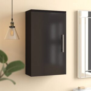 Salona 40 x 68cm Wall Mounted Cabinet Belfry Bathroom Finish: Anthracite