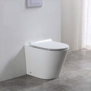 Jamaica Back to Wall Toilet with Soft Close Seat Belfry Bathroom