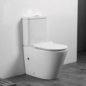 Ohalloran Close Coupled Toilet with Button Flush and Soft Close Seat Belfry Bathroom