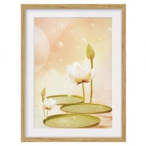 Water Lilies Magic Framed Graphic Art Print East Urban Home Size: 70 cm H x 50 cm B, Frame options: Natural oak, null: null