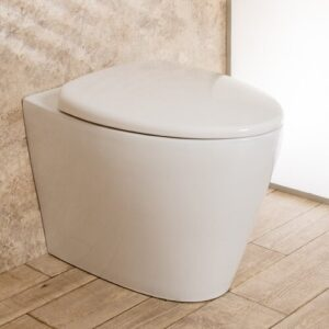 Bernyce Wall Hung Toilets with Soft Close Seat Belfry Bathroom