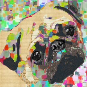 'Pug Nose' Graphic Art Print on Wrapped Canvas